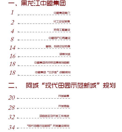 黑龙江某集团项目策划方案