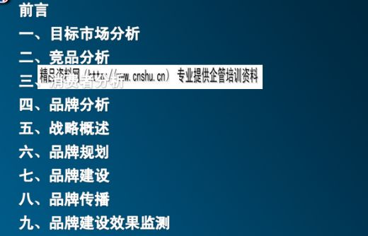 上海某体育文化公司给NBA品牌企划案