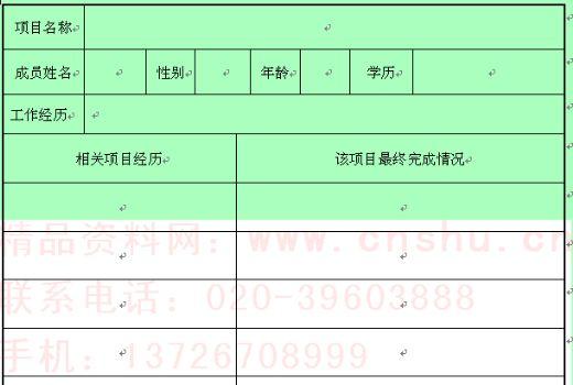 项目成员审核表单
