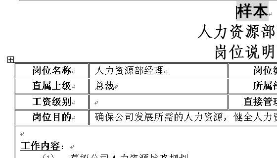 公司咨询项目 岗位说明书样本 doc 1页