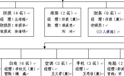 某电器公司1号店人员组织结构图