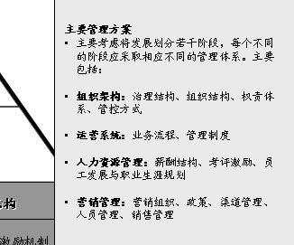 某国际货运公司战略项目分析
