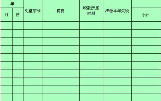 缴往年欠税辅助台帐 xls 页 财务表格