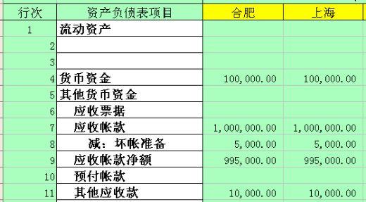 公司预算资产负债表 xls 页 财务表格