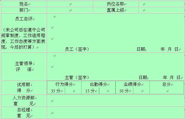 试用员工考核情况记录表