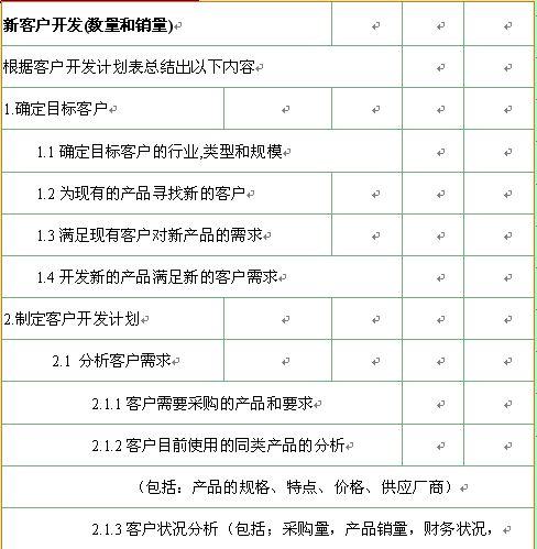 某公司新客户开发计划模板(doc 2页)_销售表格_精品