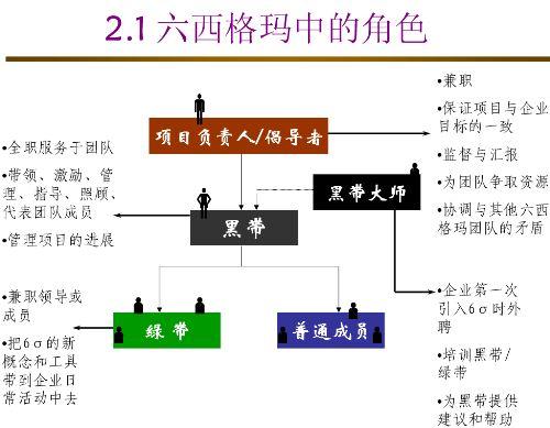 六西格玛管理体系的实施